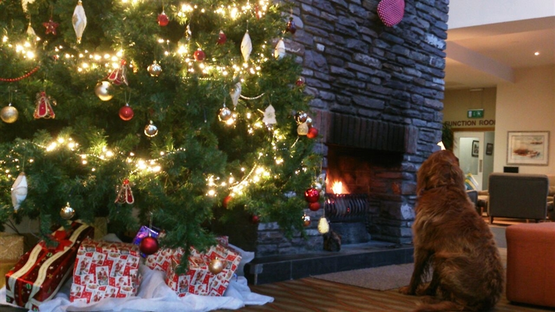 Festive 2 Night Stay - 2 Bedroom Apartment - From €260